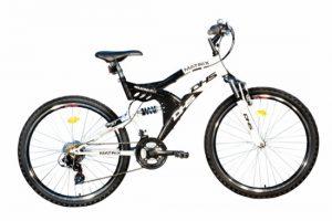 Bicicleta DHS