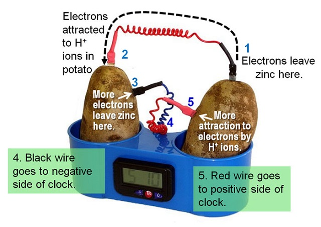 2-potato-clock-electrochemistry