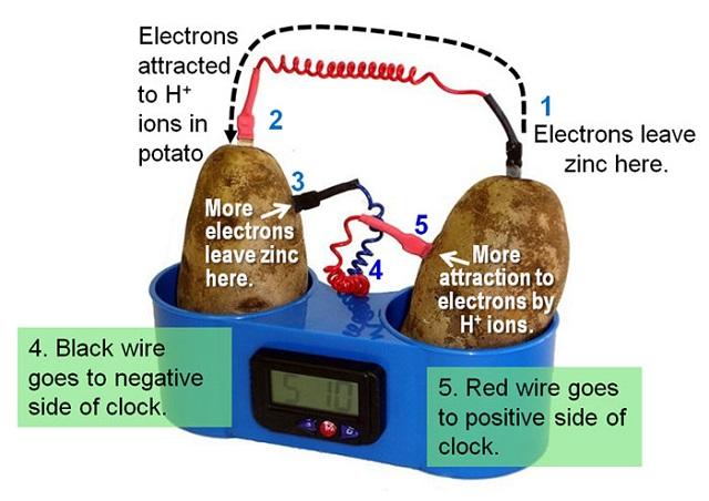 2-potato-clock-electrochemistry